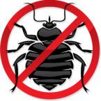 شركة مكافحة وابادة الحشرات نهائيا